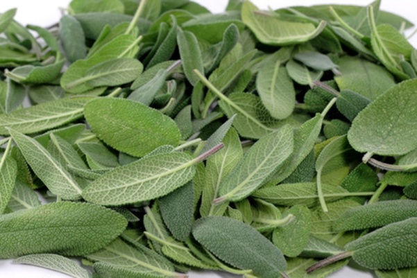 sage, food and depression