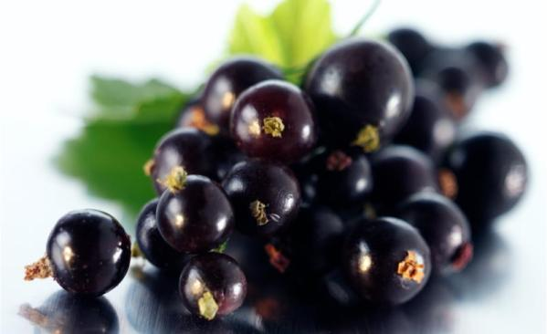 food and depression, blackcurrants